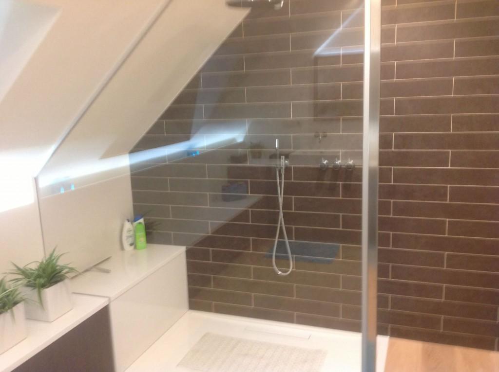 Badkamerrenovatie & dakvenster te Beverst (Bilzen) - Ecolep